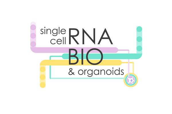 RNA Bio