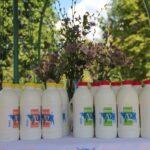 Obereg-A2-Milk